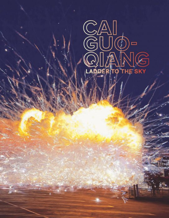 Cover for Cai Guo-Qiang: Ladder to the Sky