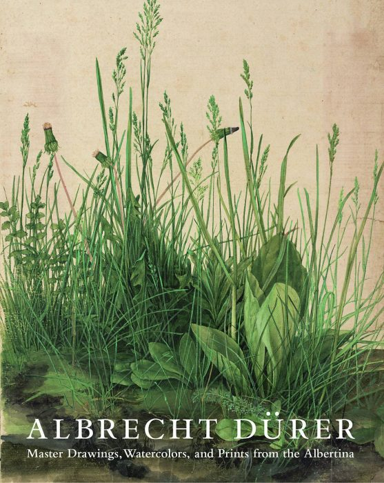 Cover for Albrecht Dürer: Master Drawings, Watercolors, and Prints from the Albertina