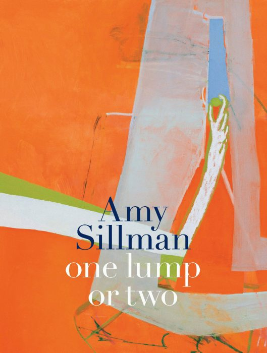Cover for Amy Sillman: One Lump or Two