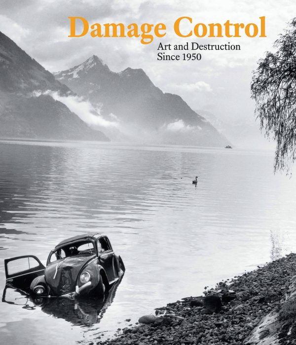 Cover for Damage Control: Art and Destruction Since 1950