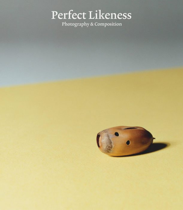 Cover for Perfect Likeness: Photography & Composition