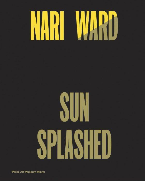 Cover for Nari Ward: Sun Splashed