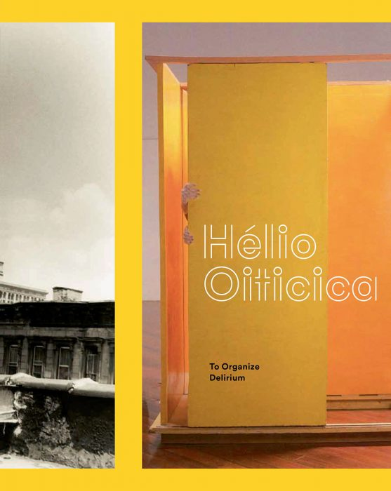 Cover for Hélio Oiticica: To Organize Delirium