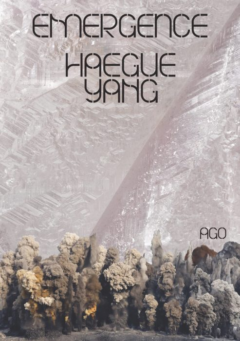 Cover for Haegue Yang