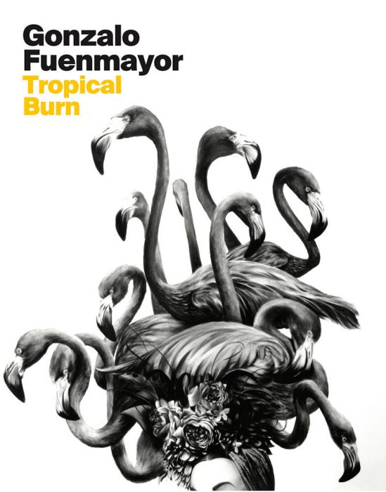 Cover for Gonzalo Fuenmayor: Tropical Burn