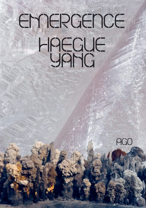 Cover for Haegue Yang: Emergence